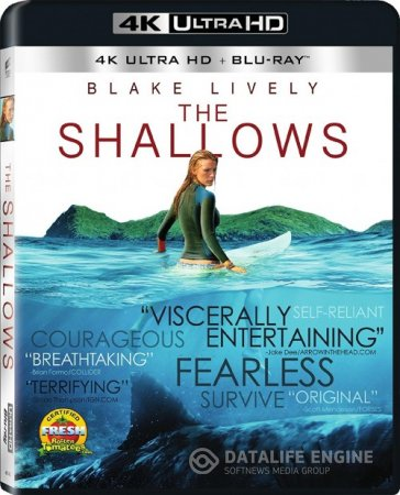 The Shallows (2016) 2160p 4K UltraHD BluRay (x265 HEVC 10bit) Multi DTSHD-MA MSubs