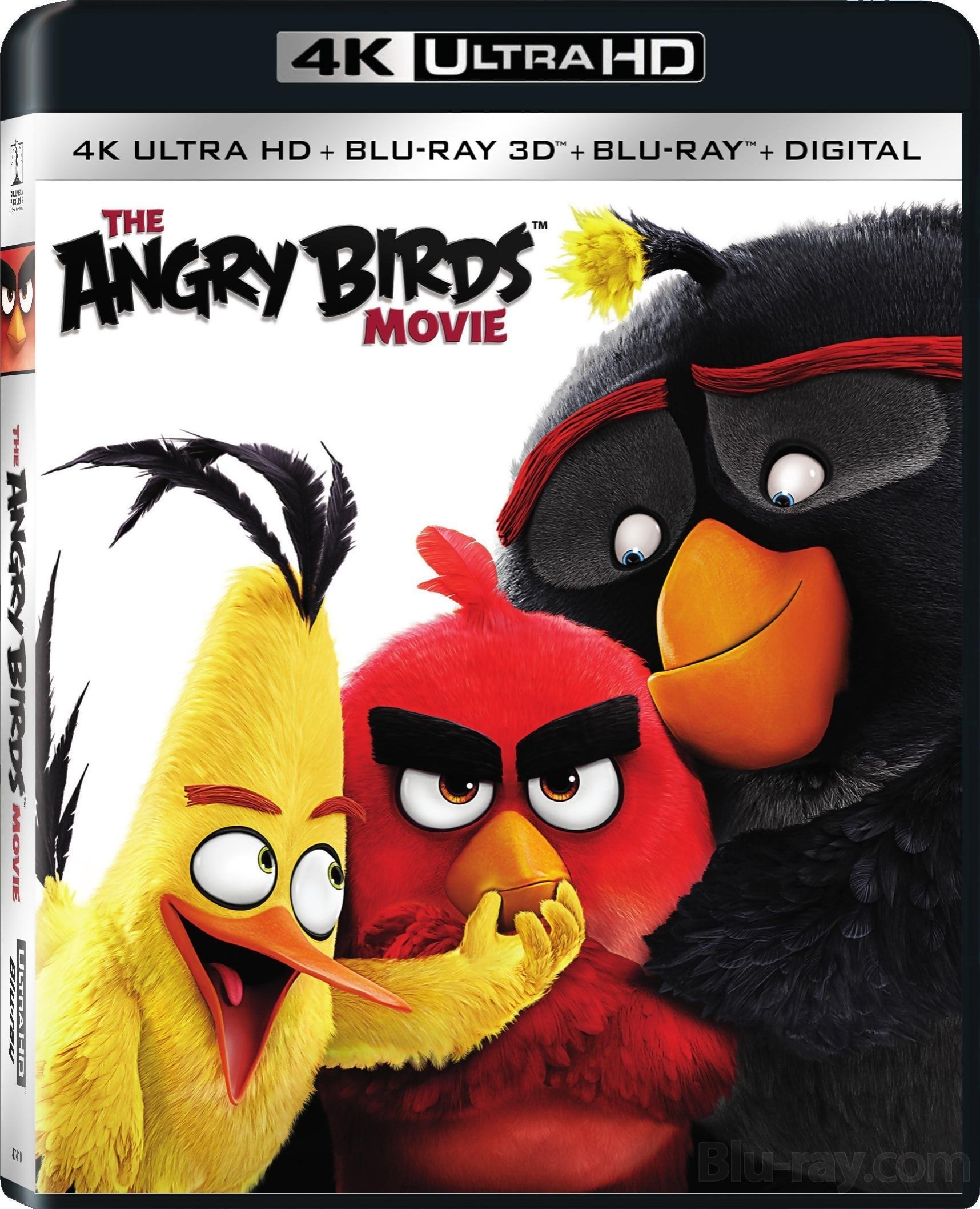 Angry Birds (2016) in 4k Ultra HD