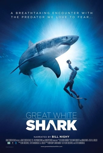 Great White Shark 4K 2013 DOCU